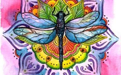 Dragonfly Mandala Timelapse