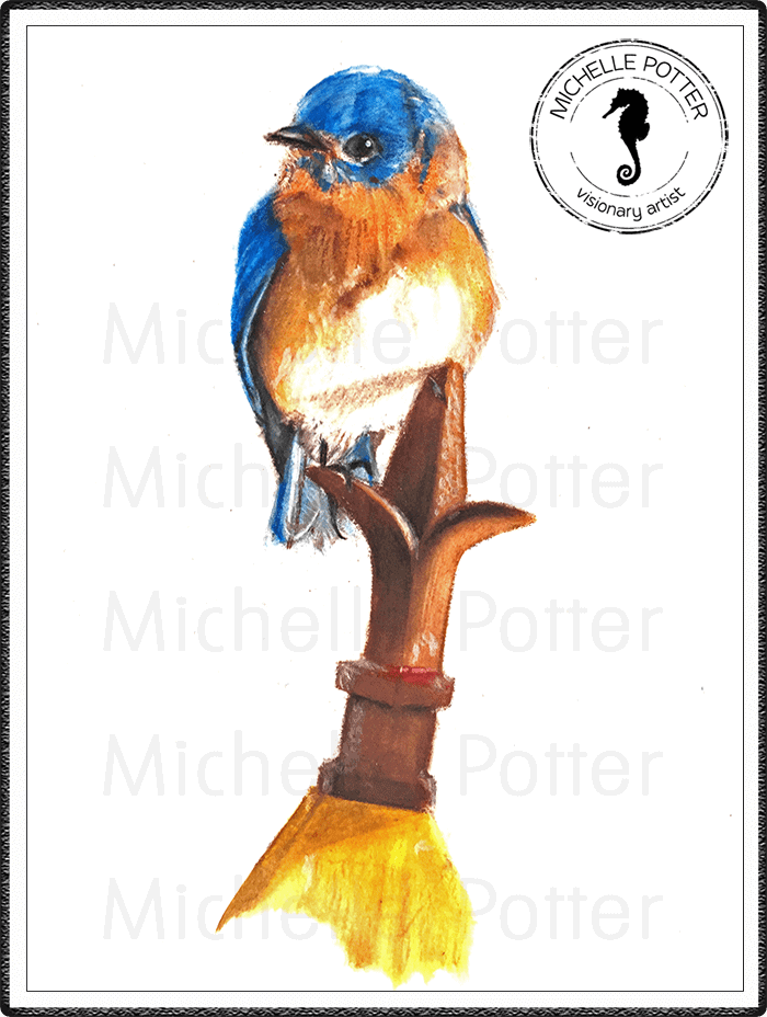 Commissioned_Art_Paints_Michelle_Potter_Bird_Eastern_Bluebird_Large
