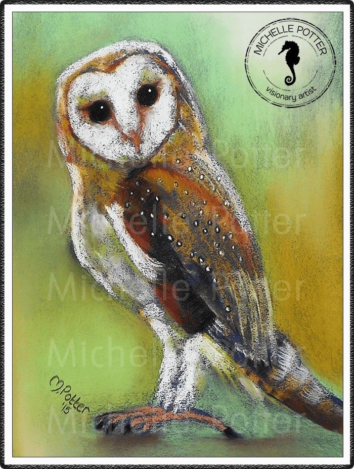 Commissioned_Art_Pastels_Michelle_Potter_Barn_Owl_Large
