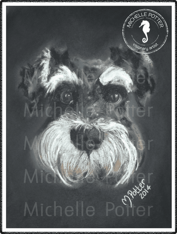 Commissioned_Art_Pastels_Michelle_Potter_Dog_Harry_Large