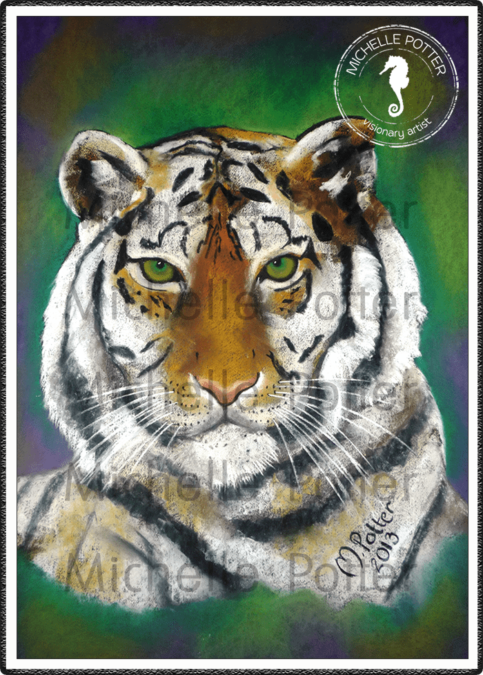 Commissioned_Art_Pastels_Michelle_Potter_White_Tiger_Large