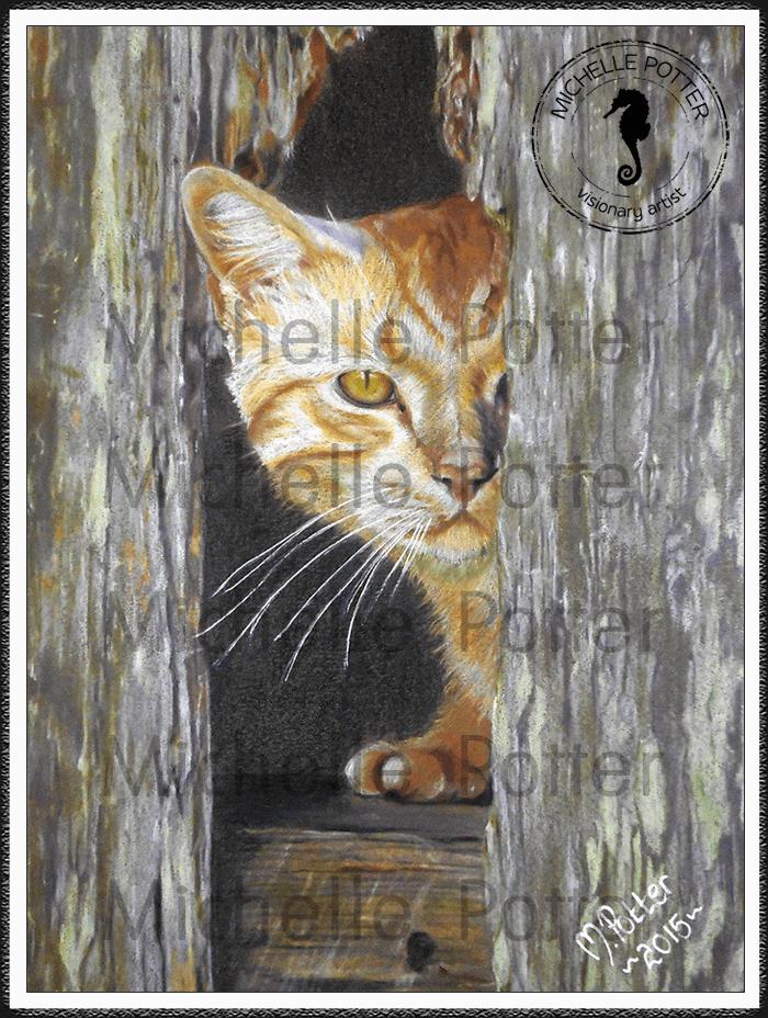 Commissioned_Art_Pencils_Michelle_Potter_Cat_Ginger_Large