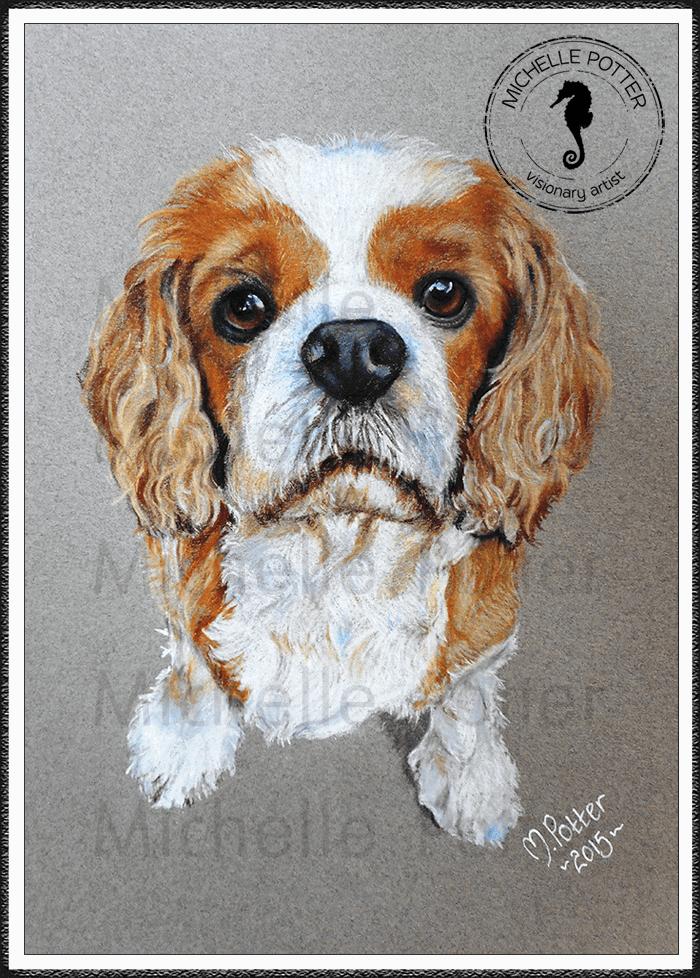 Commissioned_Art_Pencils_Michelle_Potter_Dog_King_Charles_Jake_Large