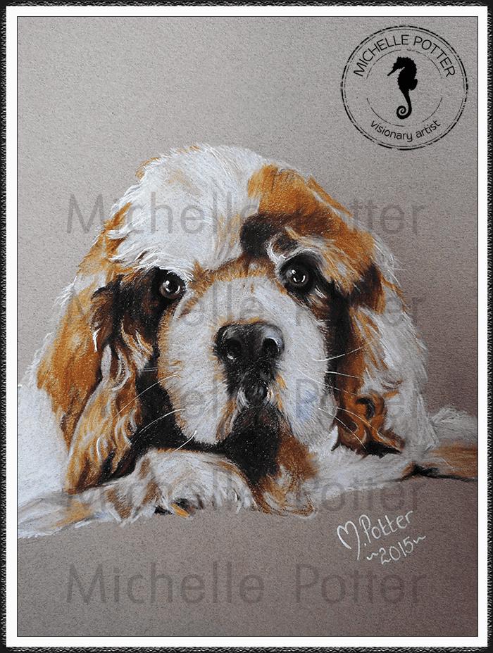 Commissioned_Art_Pencils_Michelle_Potter_Dog_King_Charles_Oscar_Large