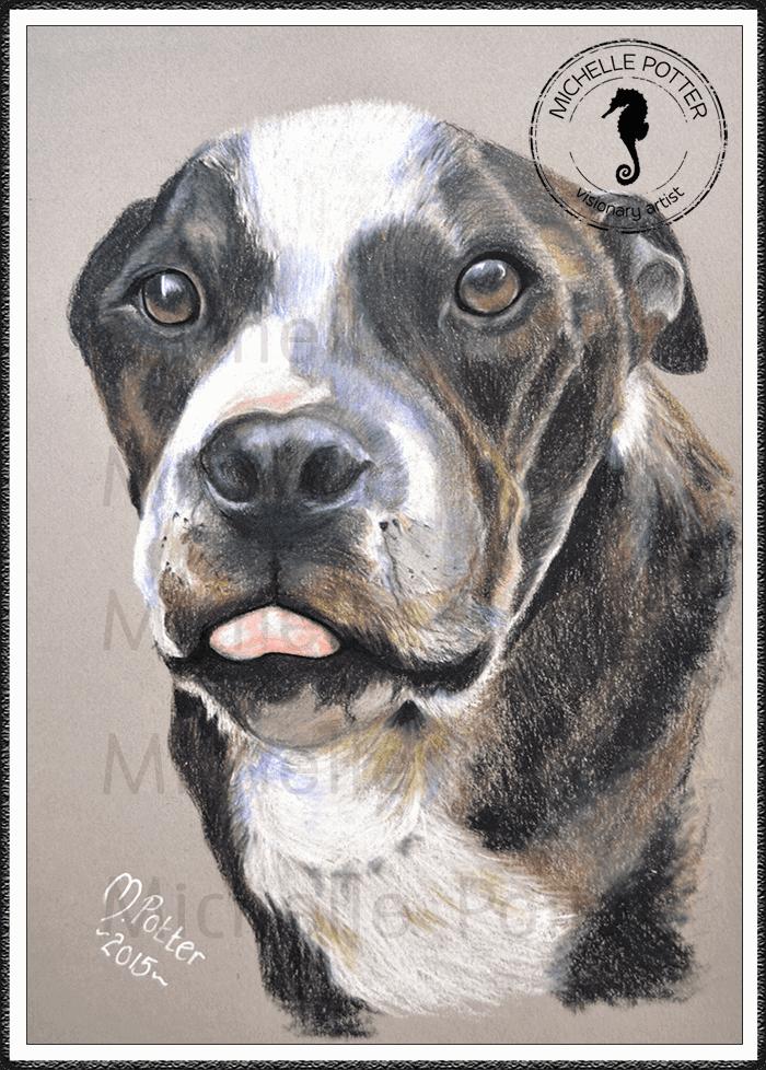 Commissioned_Art_Pencils_Michelle_Potter_Dog_King_Large