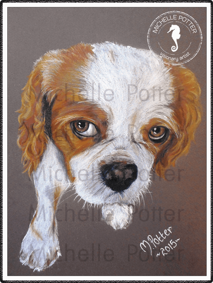 Commissioned_Art_Pencils_Michelle_Potter_Dog_Molly_Large