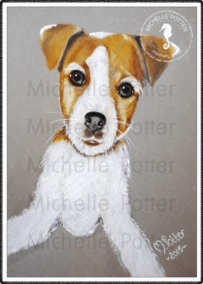 Commissioned_Art_Pencils_Michelle_Potter_Dog_Puppy_Phoebe_Large