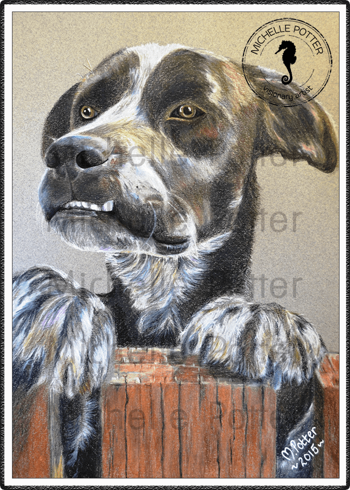 Commissioned_Art_Pencils_Michelle_Potter_Dog_Ronnie_Large
