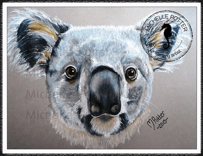Commissioned_Art_Pencils_Michelle_Potter_Koala_Large