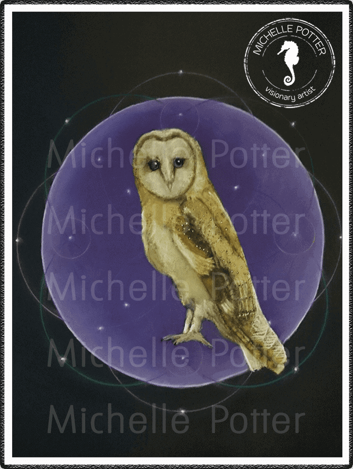 Intuitive_Art_Pastels_Michelle_Potter_Owl_Large
