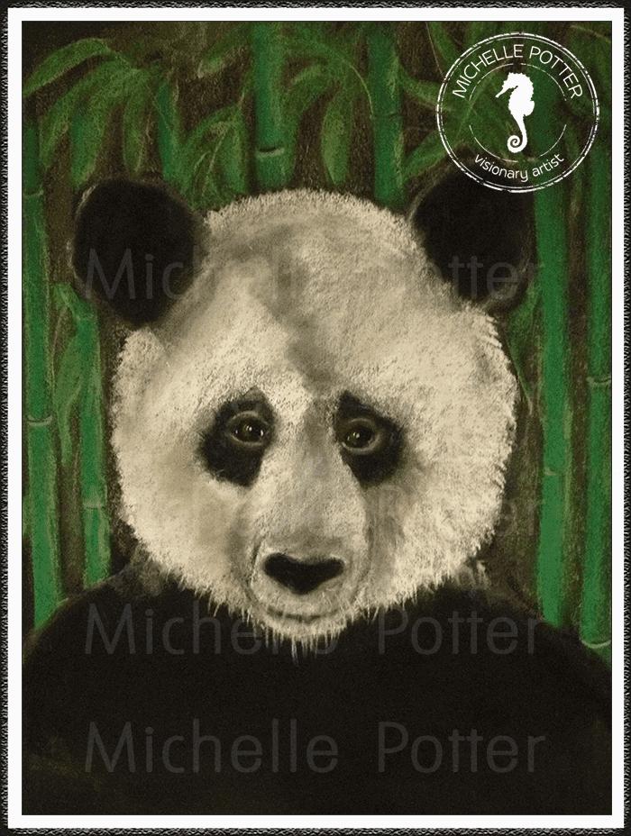 Intuitive_Art_Pastels_Michelle_Potter_Panda_Large