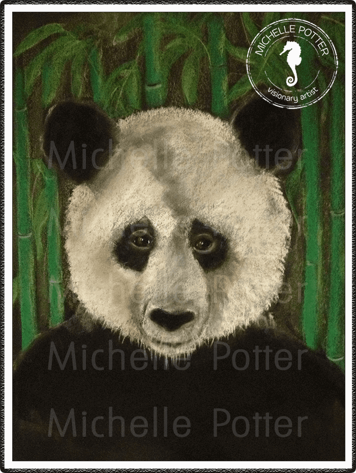 Spirit_Guide_Art_Michelle_Potter_Panda_Large